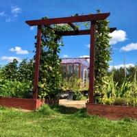 Garden Arbor DIY Build